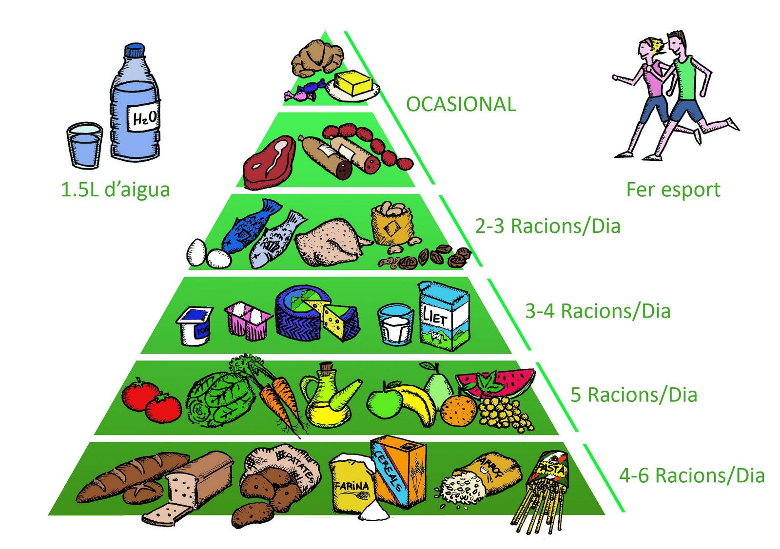 Resultado de imagen de piramide d'aliments