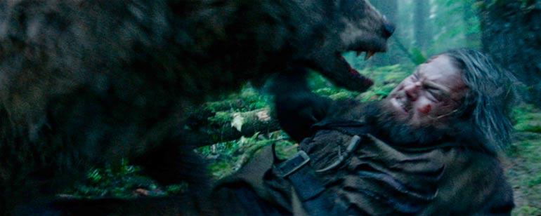 Resultado de imagen de osos contra hombres