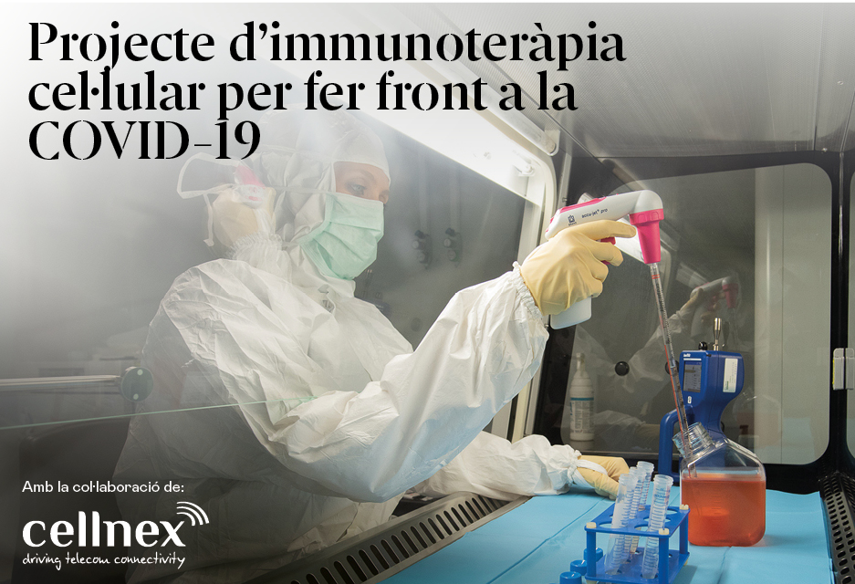 Projecte de immunoteràpia cel·lular per fer front a la COVID-19