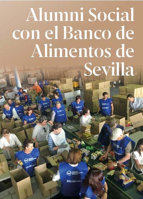 Historias de Consultores Solidarios: Hacer el Banco de alimentos de Sevilla más digital y eficiente