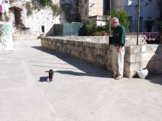 G. & black cat in Split