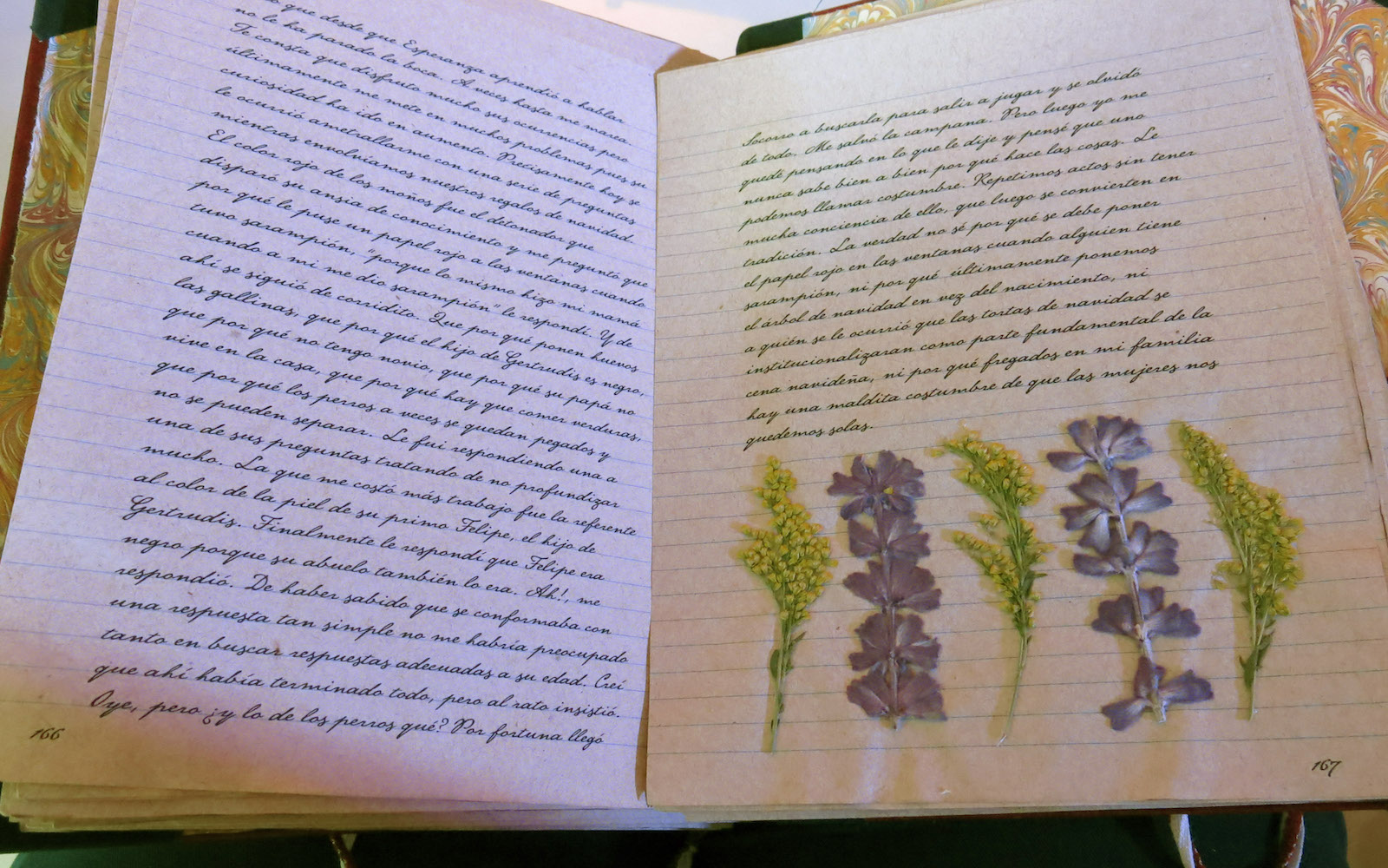 """Dried flowers and herbs a pressed inside the original manuscript of Laura Esquivel's """"El diario de Tita"""" at a press conference in Mexico City on Wednesday, May 18, 2016.Esquivel presented """"El diario de Tita"""" a book with new aspects from her popular novel """"Como agua para chocolate."""" The author said she plans to convert the story into a trilogy. (AP Photo/Berenice Bautista) Esquivel presented """"El diario de Tita"""" a book with new aspects from her popular novel """"Como agua para chocolate."""" The author said she plans to convert the story into a trilogy. (AP Photo/Berenice Bautista)"""