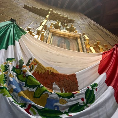 La Virgen de Guadalupe les cumple, y ellos no le fallan