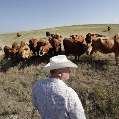 El día que los rancheros de Texas proTrump fueron víctimas de su guerra económica contra México