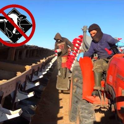 #Puercos: Este rancho de Kansas transa y casi esclaviza a los inmigrantes