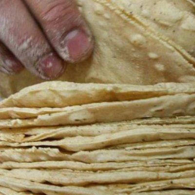 Mexicanos crean tortillas que no engordan y ayudan a combatir la obesidad