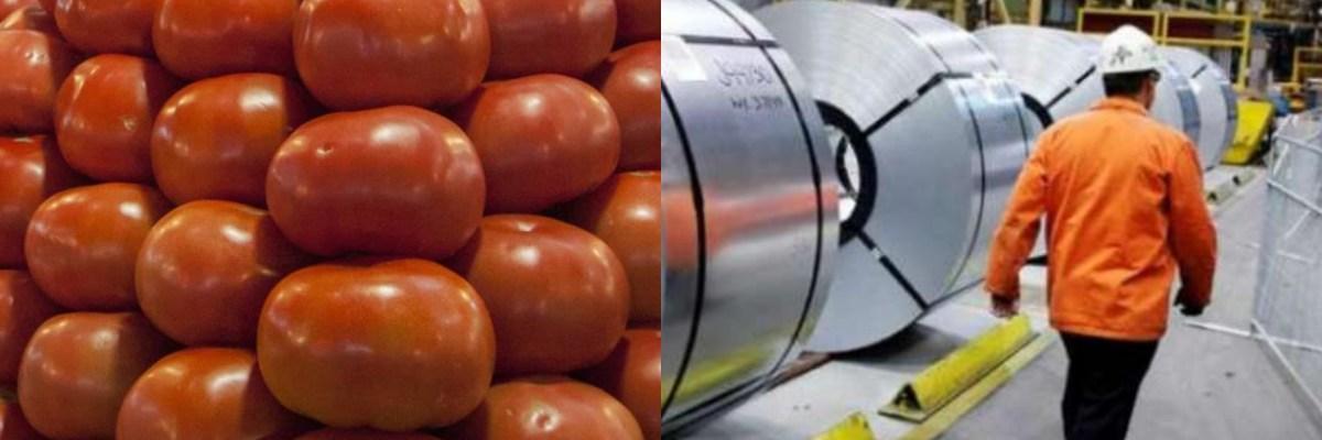 De esta manera, el gobierno mexicano apoyará a los productores de tomate y el acero