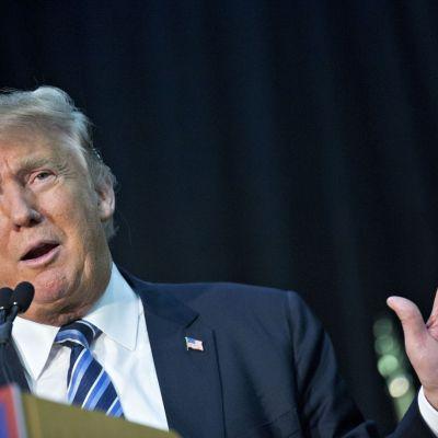 ¿Qué pasará con el resultado de la elección de EUA? Aquí te damos una idea