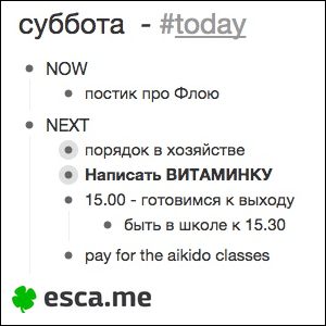 esca.me_floya_today_full