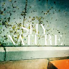 Shy Nature - Fine - Washout - Sinking Ship