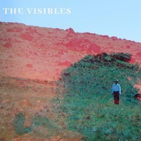 The Visibles - Clarendon Hills