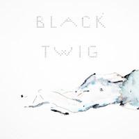 Black Twig - Pastel Blue - Heliogram