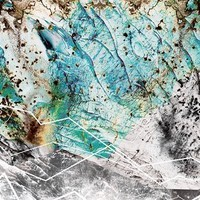 Spiders Everywhere - Glacier