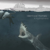 Identical Homes - A. Hydrophelia - Miles and Miles