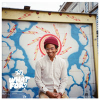 Toro Y Moi - Empty Nesters - What For?
