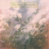 Day Wave - We Try But We Don't Fit In
