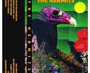 The Hermits - Chemicals Gone Bad