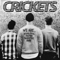 Crickets - Elastic - Top Agosto 2020