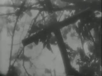 "FIGURA 70 - Still do filme ""Ganga Bruta"", de Humberto Mauro (1933)"