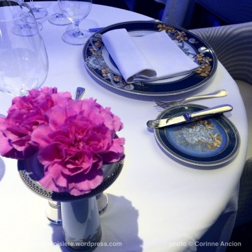 Seven Seas Navigator - Compass Rose