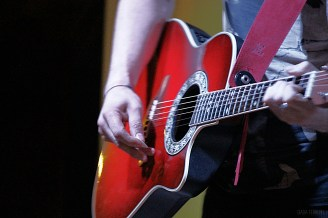 Dettaglio chitarra Alessandro greyVision