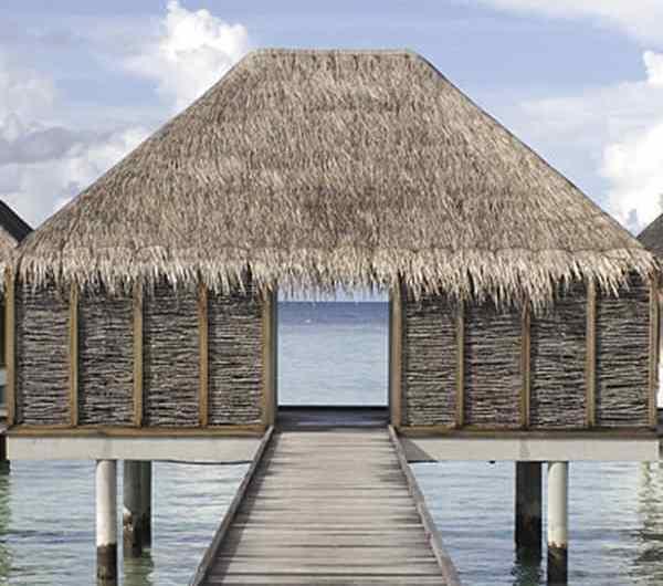 Conoce la isla de Lankanfushi en las Maldivas