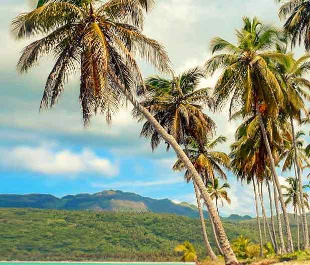 Bienvenidos a Guana Island, un paraiso en el Caribe