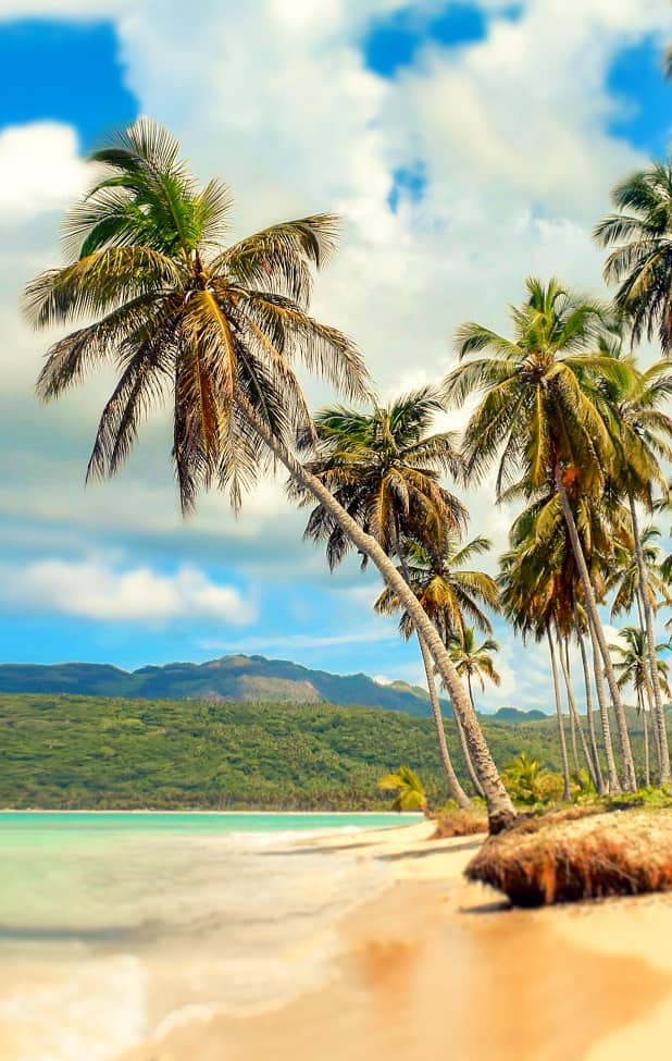 isla guana