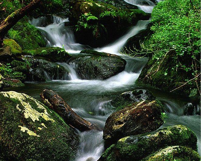 Fragas del Eume, el parque natural y sus rutas