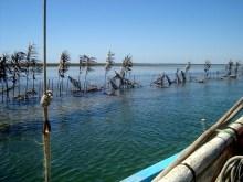 Les iles Kerkennah en felouque – Circuit 1 semaine