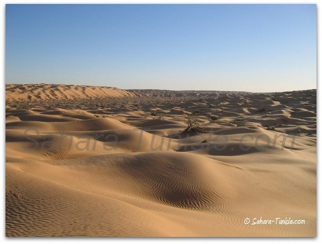 sahara tunisie sable ocre