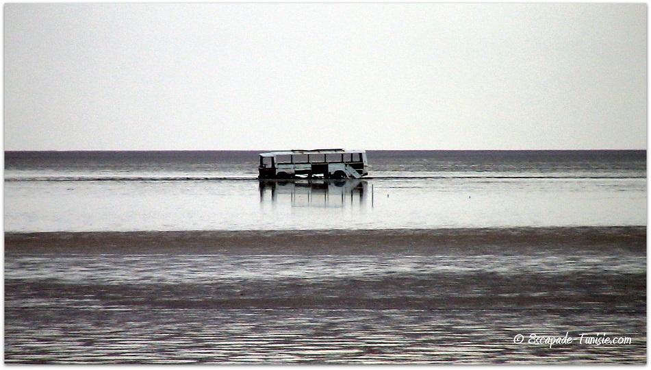 bus lac salé