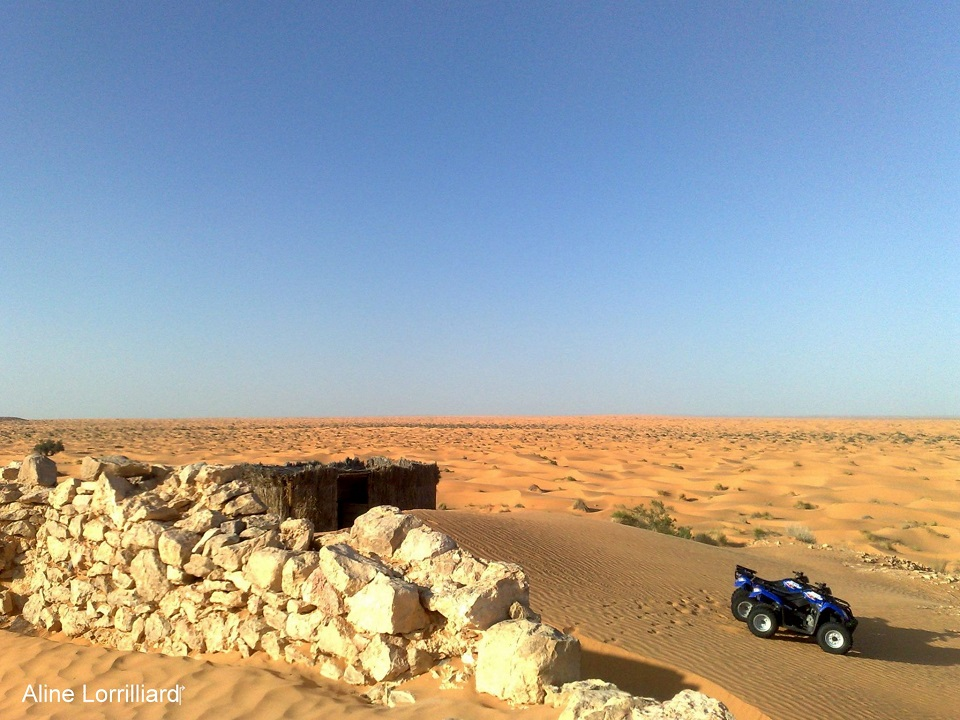excursion à ksar ghilane