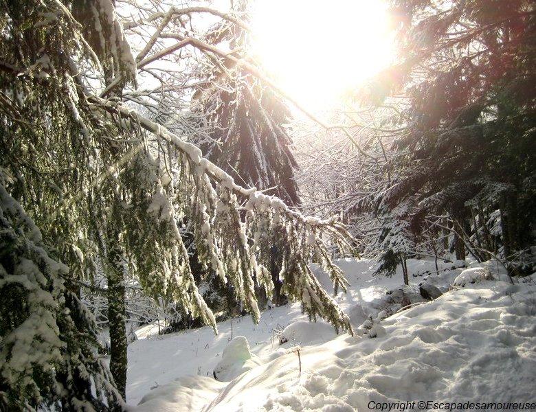 Le jour où j'ai préféré les Vosges.