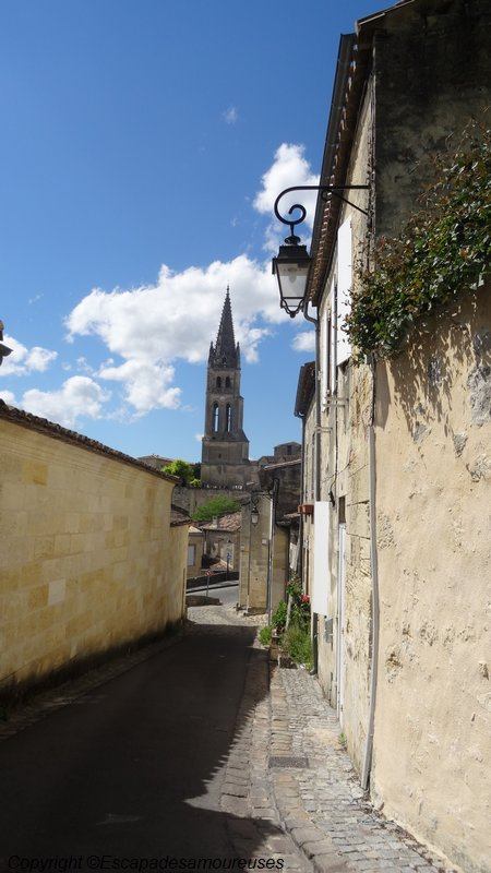 saintemilion06