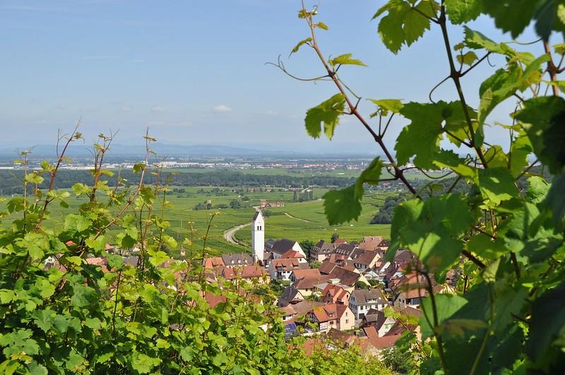 Horizons Alsace randonnée à pied ou en velo