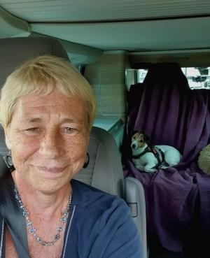 un roadtrip en van seule à 58 ans camping fleur de brièreun roadtrip en van seule à 58 ans camping fleur de brière