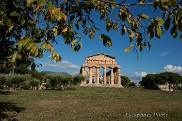 Paestum cité grecque - Temple de Héra Posseidon