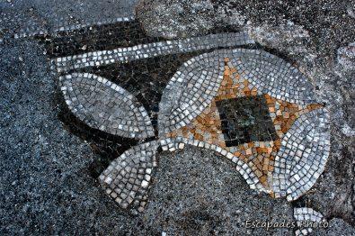 paestum cité grecque en italie, mosaïques