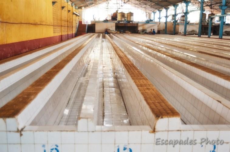 usine caoutchouc de Chup - bassins de décantation