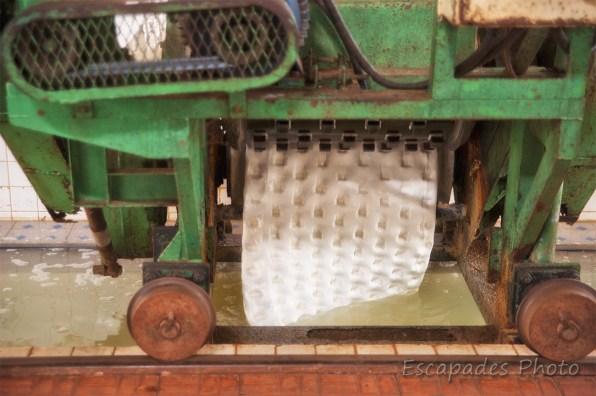 Usine de Chup - presse à latex