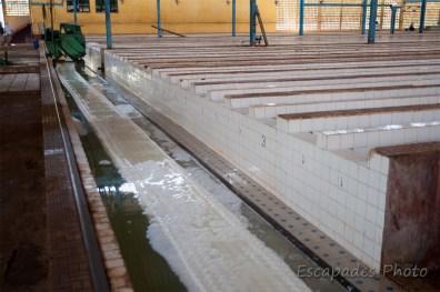 Usine de chup - les bassins, la presse, le tapis
