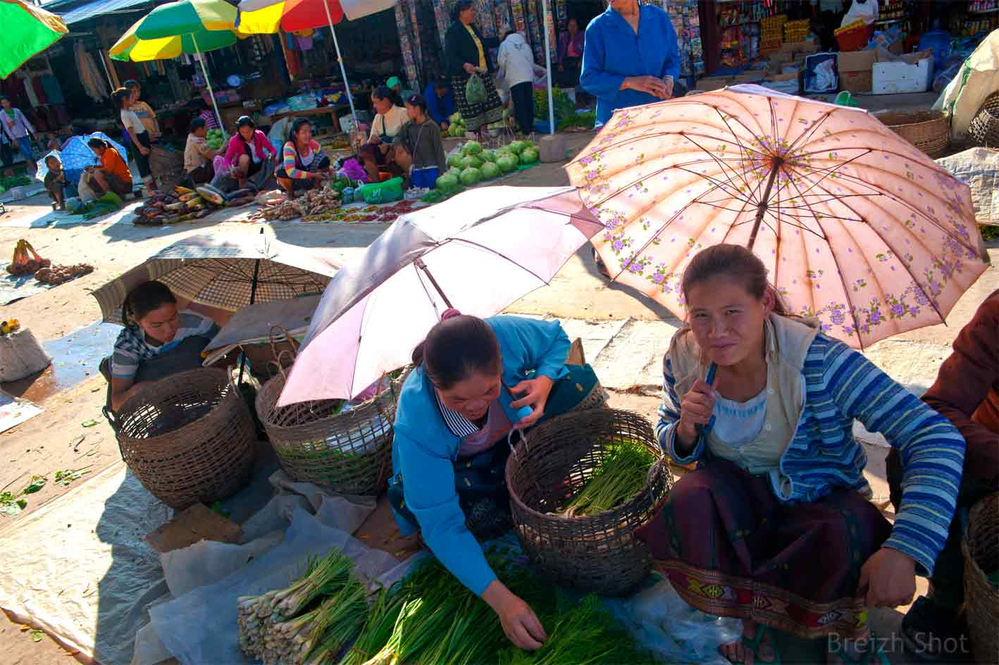 Marché de Luang Namtha, vitrine du Nord Laos