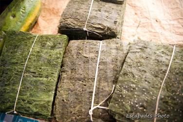 cladophora - algue des rivières - marché de luang namtha