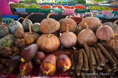 cucurbitacées - marché de luang namtha