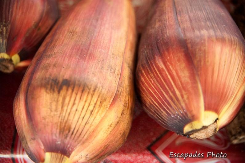 épis de maïs - marché de luang namtha