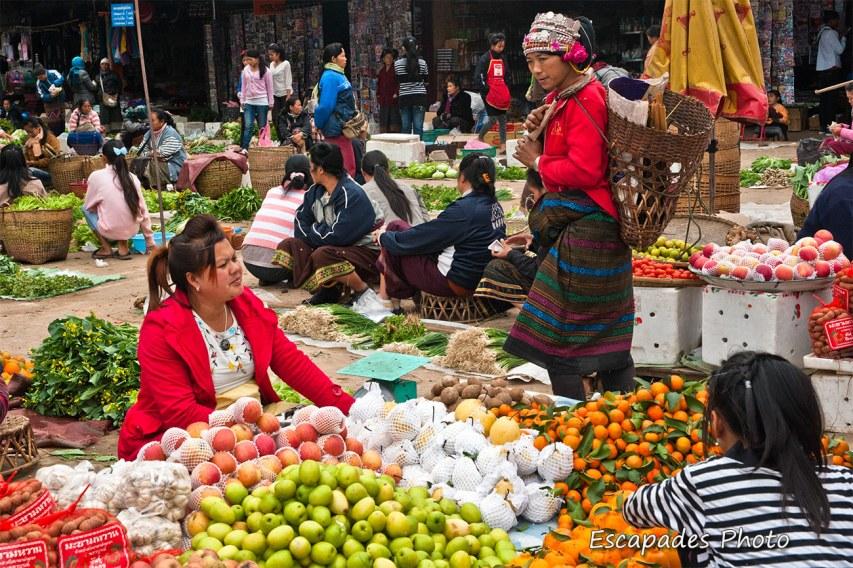 productions vivrières - marché de luang namtha