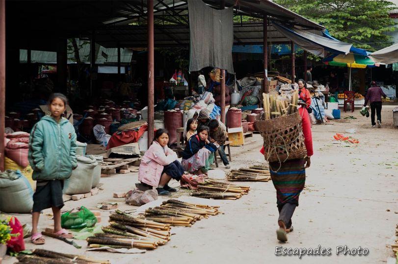 Cueillette chez les Akhas - Luang Namtha - le marché
