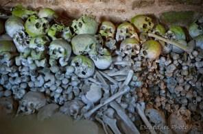 Ossements humains - ossuaire Trégornan