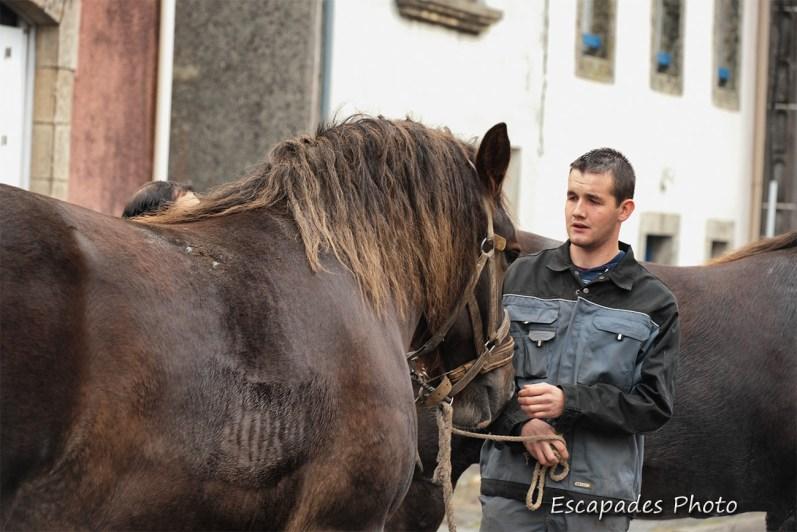 Jeune éleveur breton - Roudouallec
